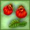 Цветок Неферто